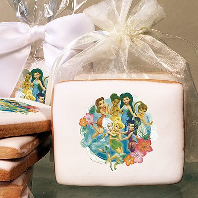 Disney Fairies Pixie Hollow Friends Photo Cookies