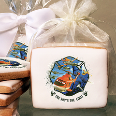 Planes 2 Sky's the Limit Photo Cookies