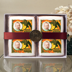 HOW TRAIN DRAGON DRAGON MASTER Cookie Gift Box