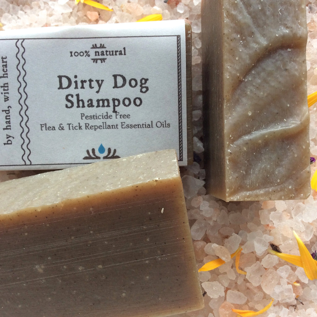 Camamu's Dirty Dog Shampoo is an all-natural dog shampoo made with moisturizing oils and flea and tick repellant essential oils. Completely natural and pesticide free.