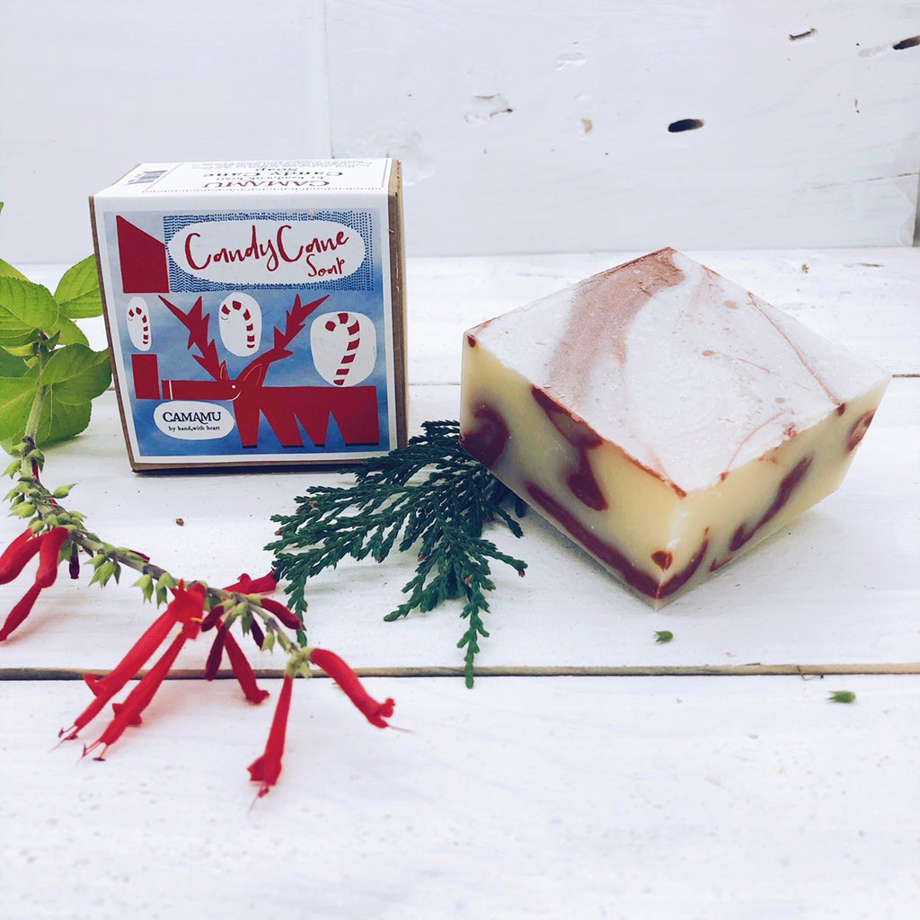 Candy Cane Holiday Soap: Hand illustrated limited edition