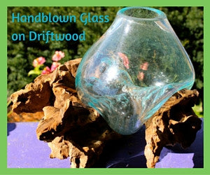 Blown Glass Bubble & Teak Wood Terrariums & Fish Bowls