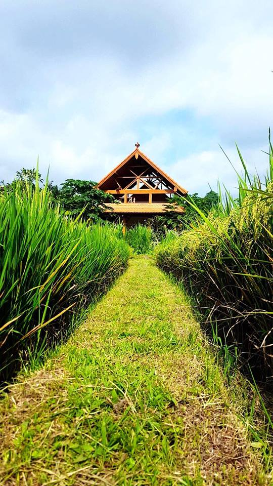 Balinese Cottage with Rice field View Ubud
