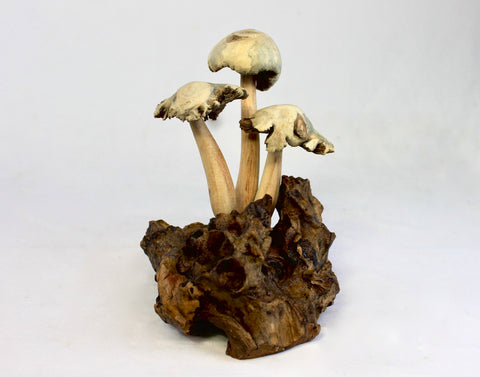 Magic Fungi Shaggy Mushroom Statue Parasite Wood Carving  Bali Art Sculpture
