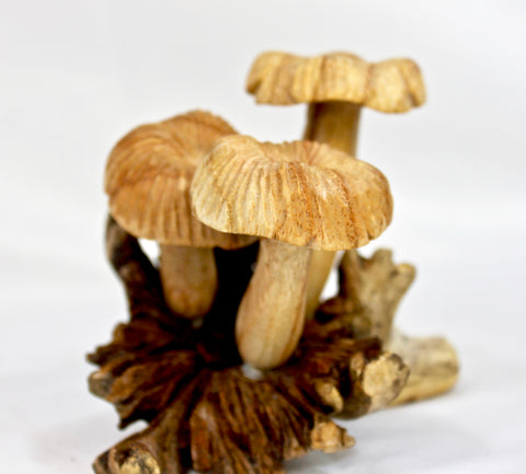 Magic Bali Mushroom toadstool Statue Parasite Wood Carving - Acadia World Traders