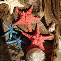 *PAIR * Glamourized SHIMMERING CORAL or BLUE Starfish with Swarovski Crystals!