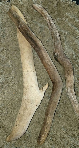 "9 1/2"" - 12""   3 Pieces of Driftwood"