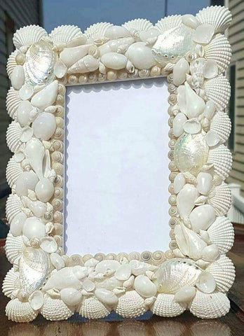 GORGEOUS White Cockle SHELL Picture Frame!