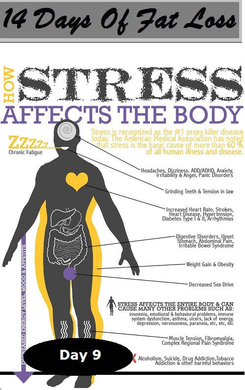 How Stress Makes You Fat: Day 9 of The 14 Days Of Fat Loss