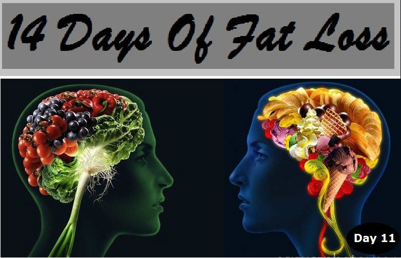 Hunger Hormones and Fat Loss: Day 11 of 14 Days of Fat Loss