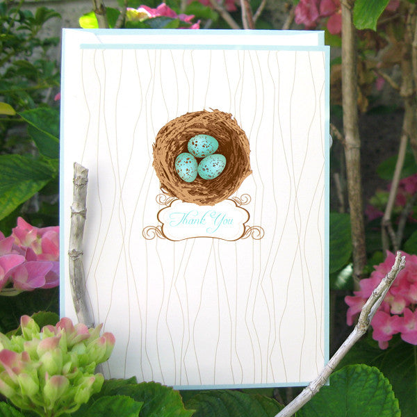 Robin's Eggs Boxed Thank You Cards