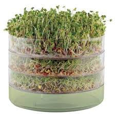 BioSnacky Seed Germinator 3-Tier Sprouter