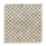 Crema Marfil Marble Polished Fan Mosaic Tile - American Tile Depot - Commercial and Residential (Interior & Exterior), Indoor, Outdoor, Shower, Backsplash, Bathroom, Kitchen, Deck & Patio, Decorative, Floor, Wall, Ceiling, Powder Room - 1