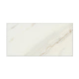 3 X 6 Calacatta Gold Marble Polished Subway Brick Field Tile - American Tile Depot - Commercial and Residential (Interior & Exterior), Indoor, Outdoor, Shower, Backsplash, Bathroom, Kitchen, Deck & Patio, Decorative, Floor, Wall, Ceiling, Powder Room - 2