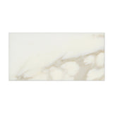 3 X 6 Calacatta Gold Marble Polished Subway Brick Field Tile - American Tile Depot - Commercial and Residential (Interior & Exterior), Indoor, Outdoor, Shower, Backsplash, Bathroom, Kitchen, Deck & Patio, Decorative, Floor, Wall, Ceiling, Powder Room - 5