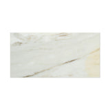 6 X 12 Calacatta Gold Marble Honed Subway Brick Field Tile - American Tile Depot - Commercial and Residential (Interior & Exterior), Indoor, Outdoor, Shower, Backsplash, Bathroom, Kitchen, Deck & Patio, Decorative, Floor, Wall, Ceiling, Powder Room - 8