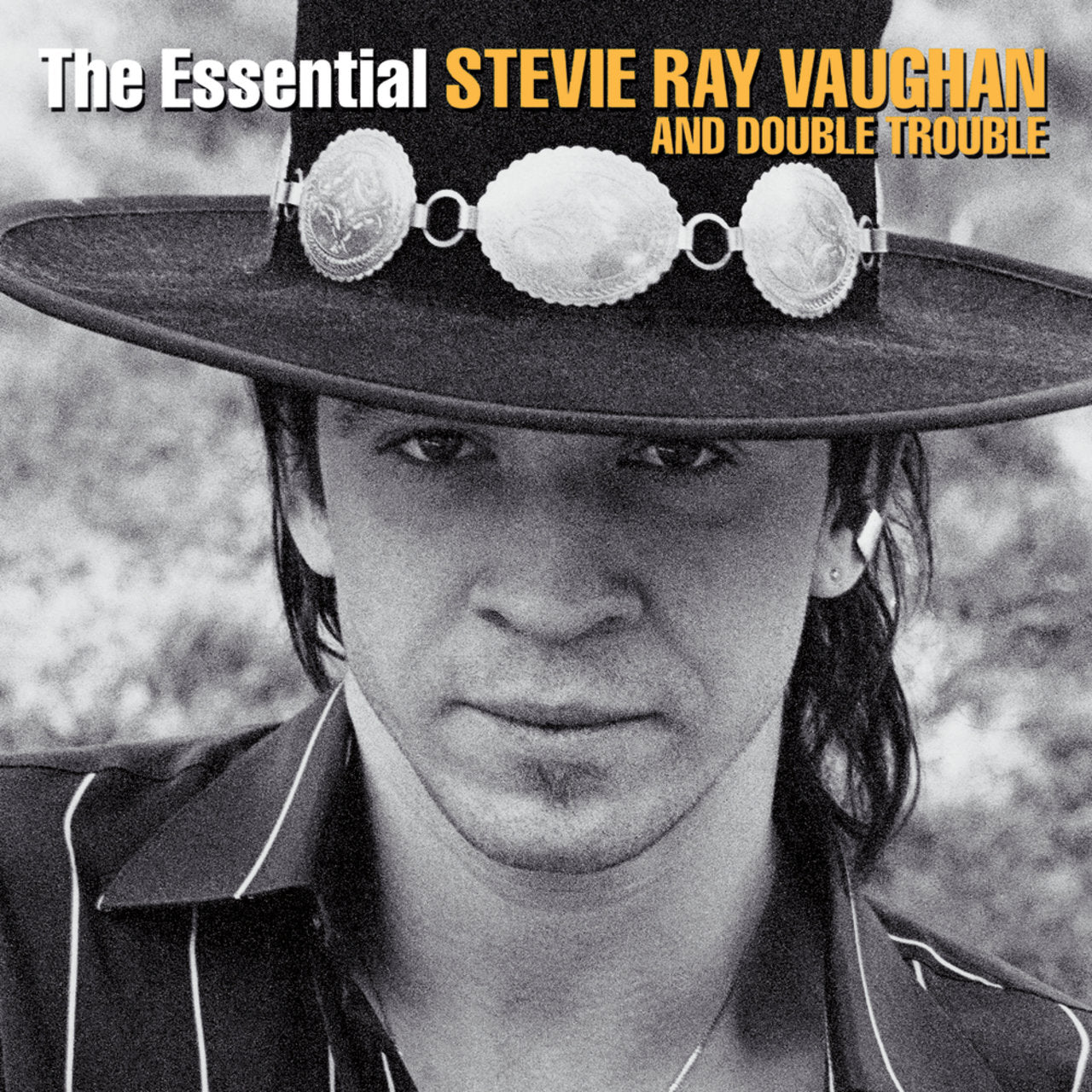Stevie Ray Vaughan And Double Trouble* ‎– The Essential Stevie Ray Vaughan And Double Trouble