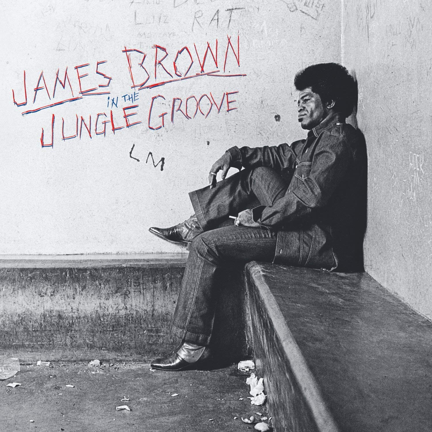 James Brown ‎– In The Jungle Groove