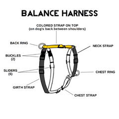 Blue-9 Balance Harness