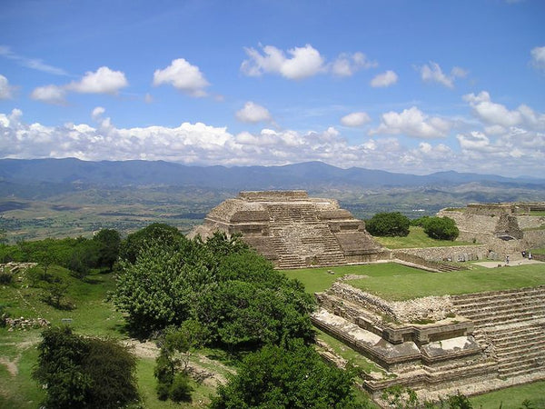 View of Monte Alban via Roaring Rhino