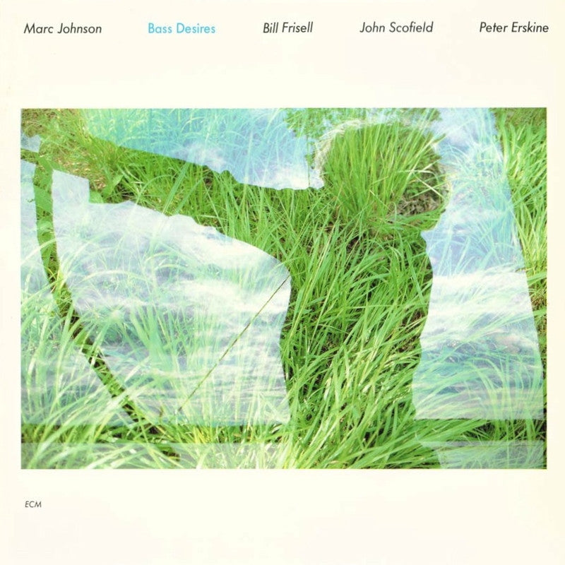 Bass Desires Ecm Marc Johnson