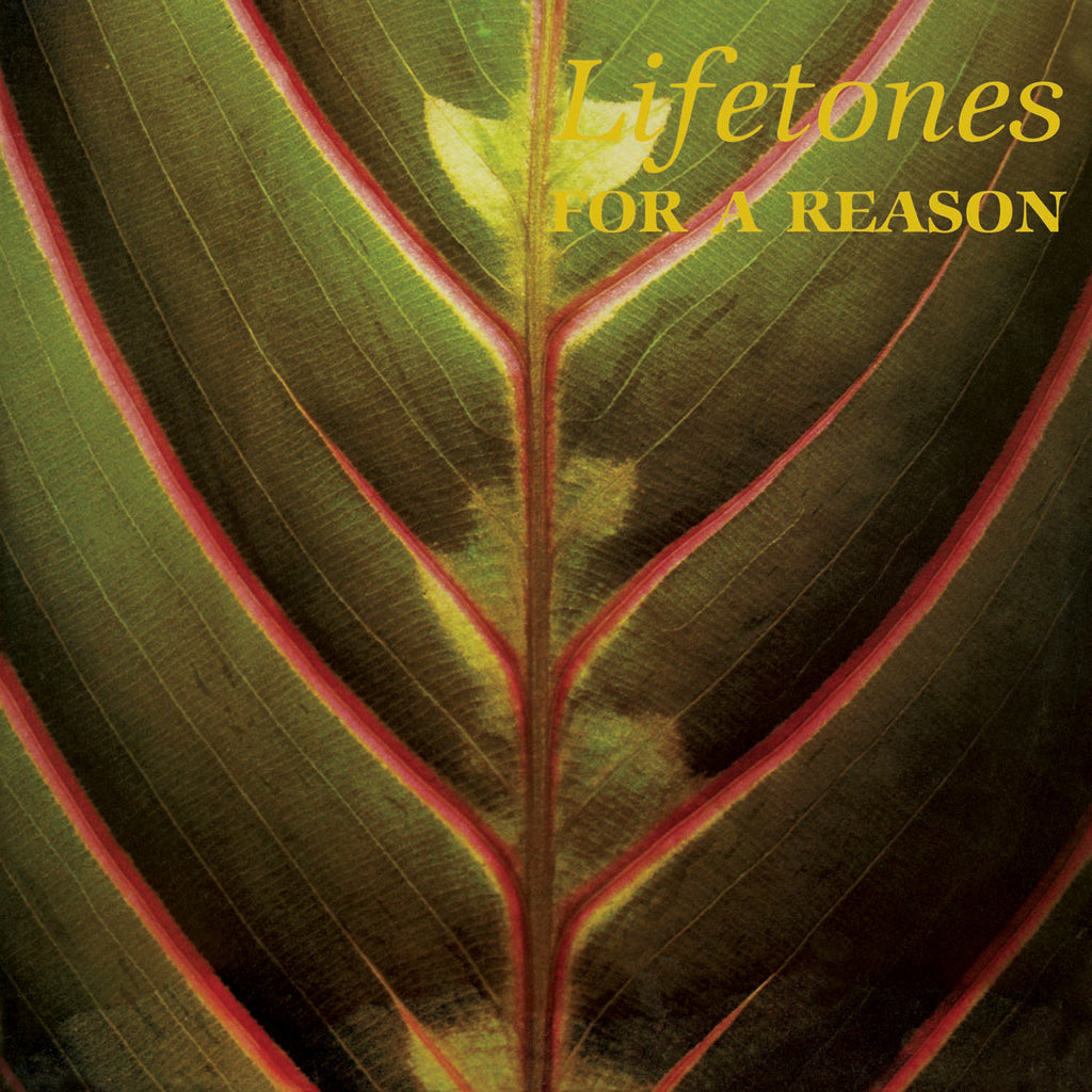 Lifetones For A Reason Light In The Attic
