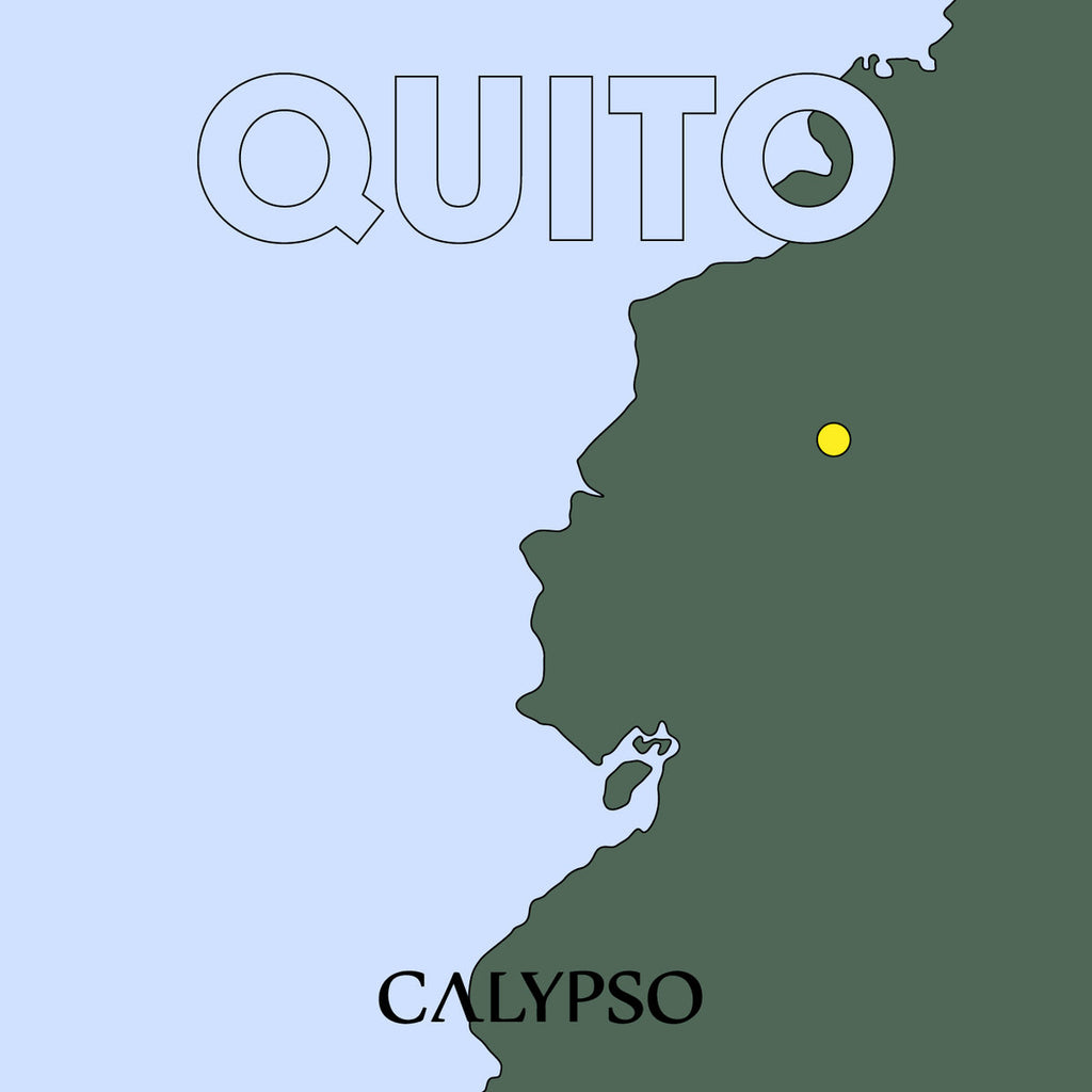 QUITO : VARIOUS ARTISTS [ Calypso Records ]