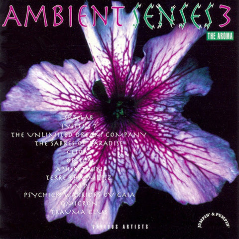 AMBIENT SENSES 3 : VARIOUS ARTISTS [ Jumpin' & Pumpin' ]