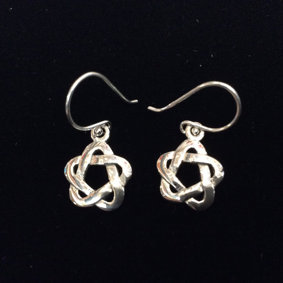 Silver Earrings EC7333