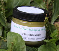 Plantain Salve - All Natural Salve to Soothe the Pain of Bee Stings, Burns, Minor Cuts