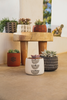 Planter - Tapered Base | Saguaro