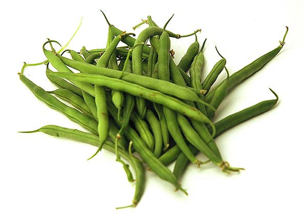 Organic French bean (buschohnen)