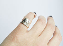 Silver Earth Ring On