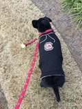 University of South Carolina Dog Hoodie Coat