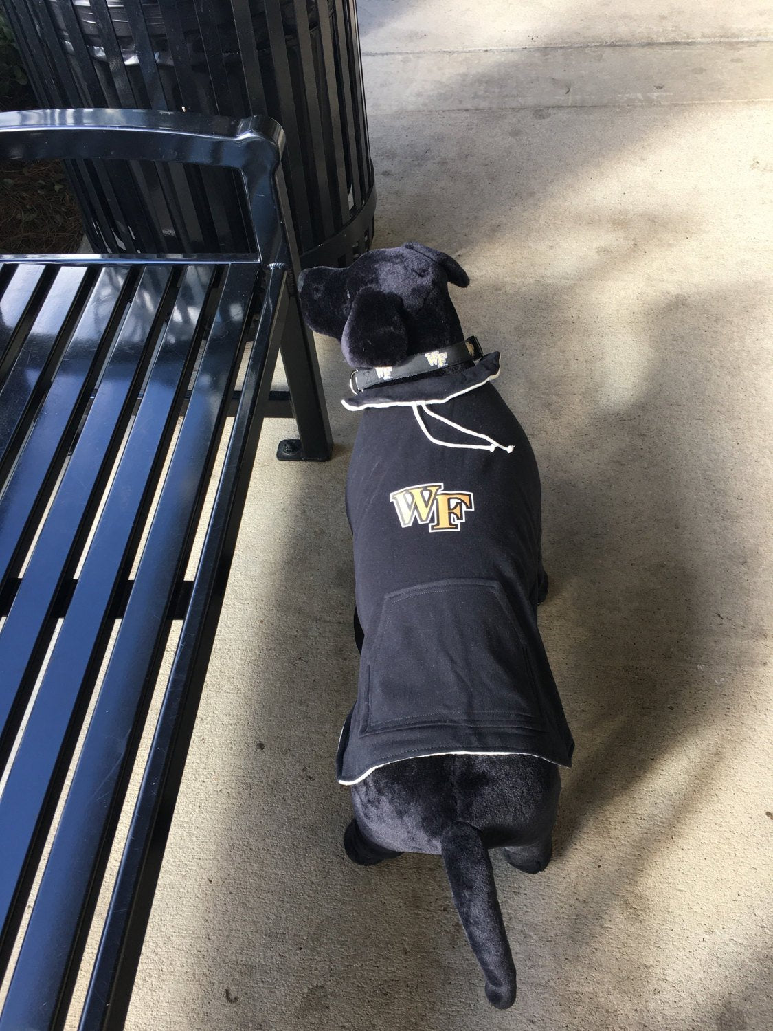 Wake Forest Dog Hoodie Coat