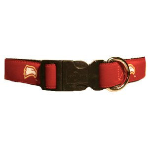 Winthrop University  Dog Collar