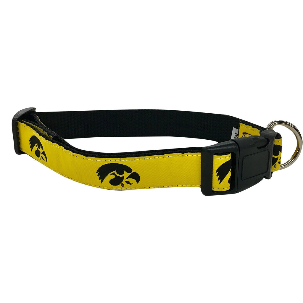 University of Iowa  Dog Collar
