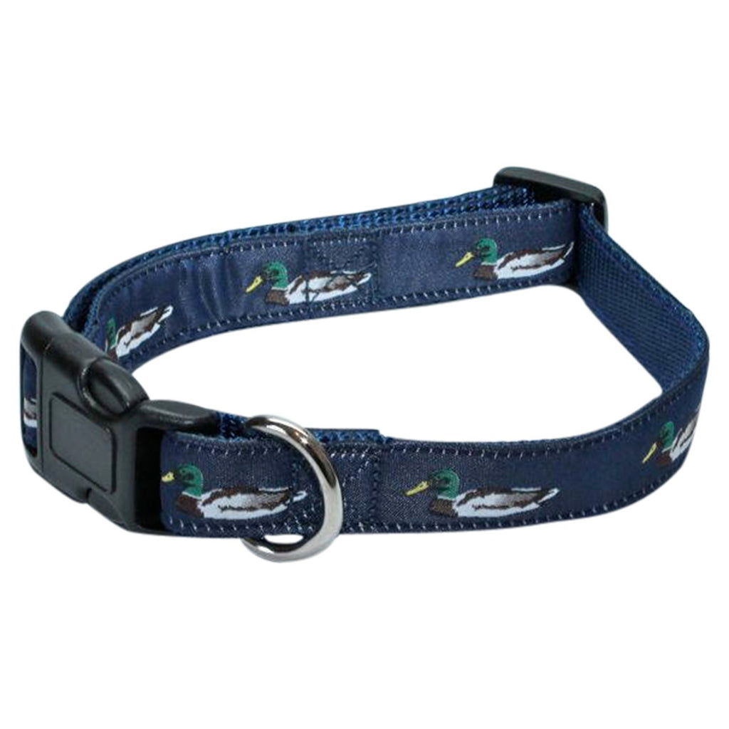 Mallard Duck  Dog Collar