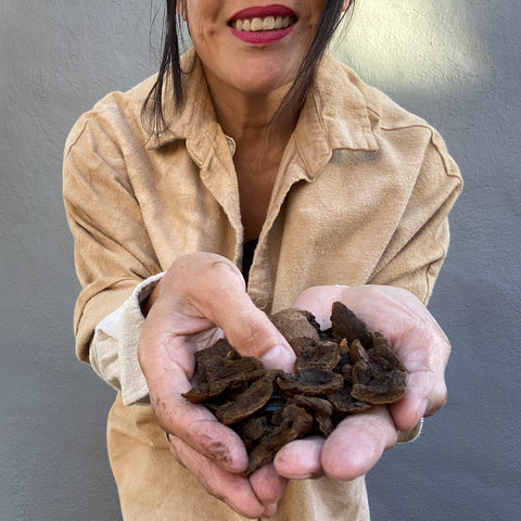 This is a photo of me holding walnuts I use for natural dyes. I sourced these from Guerneville, CA.