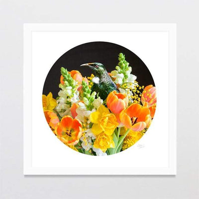 Glenn Jones Art Bouquet Tui Photo Print Art Print A3 Square 297 x 297mm / White Frame