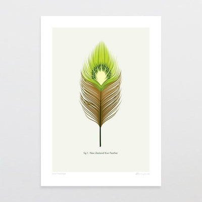 Kiwi Feather Art Print-Glenn Jones Art