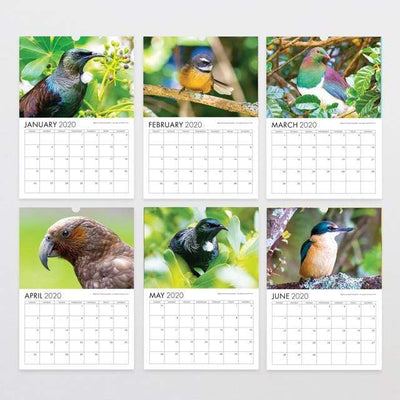 Glenn Jones Art 2020 Bird Photography Calendar Calendar A4 210mm x 297mm