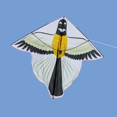 Fantail Kite-Glenn Jones Art