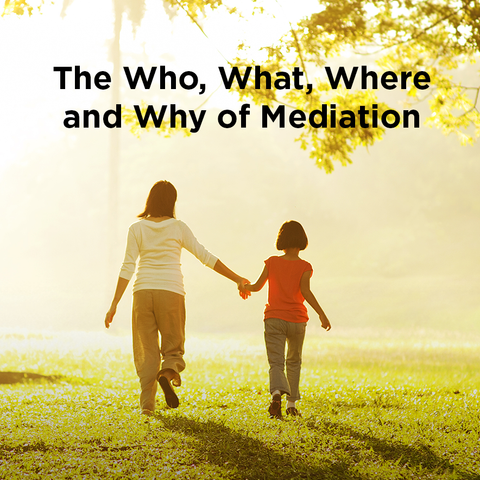 The Who, What, Where and Why of Mediation