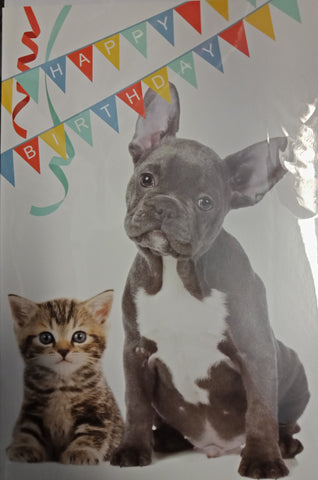 Card - Kitten & French Bulldog