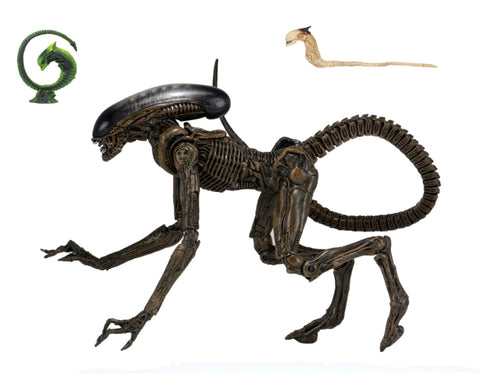 Action Figure - Alien - Dog Alien Ultimate 7""
