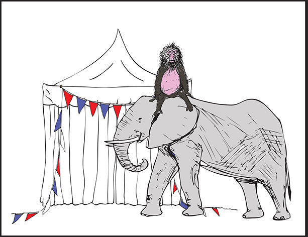'Circus' set of 5 greetings cards