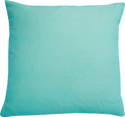Plain Mint cushion cover