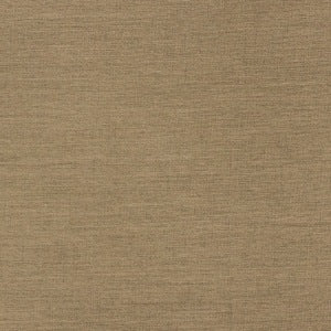Richloom Fortress Aypace Woven Acrylic Outdoor Fabric in Linen, Upholstery, Drapery, Home Accent, Richloom 2,  Savvy Swatch