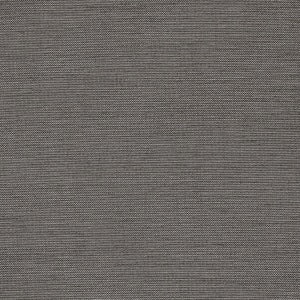 Aypace in Zinc Outdoor Fabric by Richloom, Upholstery, Drapery, Home Accent, Richloom 2,  Savvy Swatch